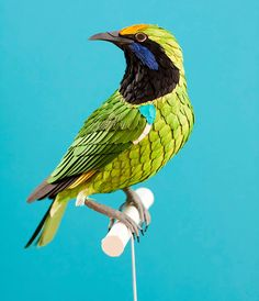 Diana Beltran Herrera constructs lifelike birds entirely out of paper. They look realistic thanks to their meticulous construction and texture.