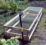 fruit cage, frugal living, site full of resources