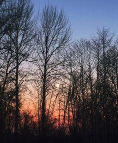 Beautiful winter sunset! #abbotsford #winternights Winter Sunset, I See It, Night, Beautiful