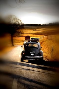 i did travel in a bug on a grand adventure which took me from NY to toronto to vanoouver BC . loved that Bug trip . Volkswagen Jetta, Buggy, Vw Vintage, On The Road Again, Love Bugs, Road Trippin, Vw Beetles, Belle Photo, Old Cars