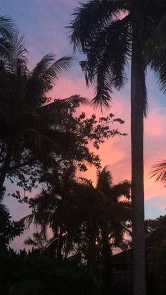 Pastel sunsets ☀️