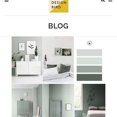 """Nouveau neutral   Read about our new favourite colour that has replaced the ever """"green"""" greys and beige  #colour #sage #thedesignbird #blog #india"""