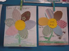 parts of a plant-with scrapbook paper