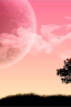 See wallpapers and ringtones from at Zedge now. Pink Moon Wallpaper, Silver Wallpaper, Phone Wallpaper Images, Desktop Pictures, Nature Wallpaper, Phone Backgrounds, Rain Wallpapers, Phone Wallpapers, Rain Pictures