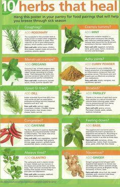 herbs :)