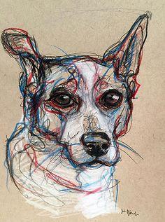 Pet Portrait Sketches - Cattle Dog www.juliepfirsch.com
