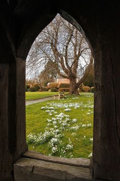 Snowdrops Garden through a Gothic Stone Window ....