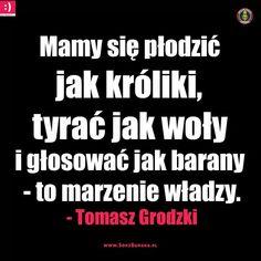 Memes, Poland, Lol, Album, Jokes, Europe, Historia, Humor, Meme