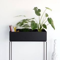 All about Fertilizing Indoor Plants Ferm Living, Living Room Interior, Home And Living, Trending Decor, Interior Design Living Room, Interior, Plant Box, Home Decor Accessories, Home Decor