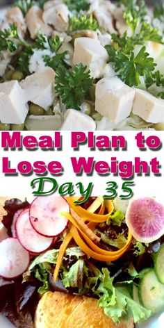 meal plan to lose weight no. 35