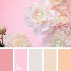 beige, brown and pink, cream, gentle colors for a wedding, gentle palette for a… Colour Pallette, Color Palate, Colour Schemes, Color Combos, Color Patterns, Pink Palette, Pastel Pallete, Design Seeds, Color Concept