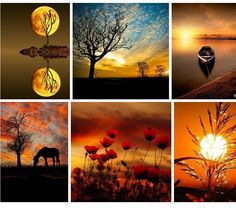 Nature is amazing In its own way Scenery Pictures, Nature Pictures, Beautiful Pictures, Beautiful Collage, Life Is Beautiful, Beautiful Places, Autumn Photography, Art Photography, Collages