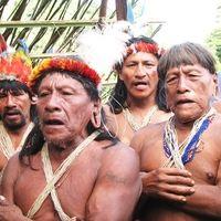"""Presidente de la República de Ecuador: dejar de destruir Yasuní-Rainforest """"Algo debe permanecer para los Huaorani"""""""