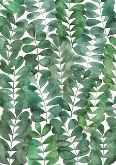 Natalie's Sketchbook: Robinia Leaves