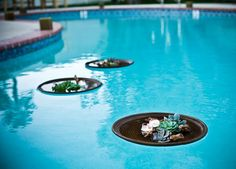 floating in the pool - votives, succulents