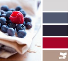 Red and blue color palette. Living room