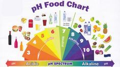 The Ultimate Guide to an Alkaline Diet (includes comprehensive list of top 74 Alkaline Foods)