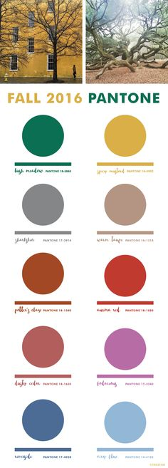 Fall 2016 Pantone Colors ok. . Really dont want to think about fall already but good to know, right :)   ?                                                                                                                                                     More