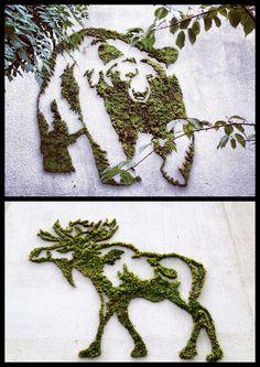 Moss Paint or Moss Graffiti. Moss Grafitti, Graffiti Art, Moss Wall Art, Moss Art, Deco Floral, Arte Floral, Moss Garden, Garden Art, Graffiti En Mousse
