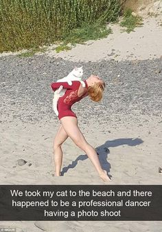 Cat owners around the world have revealed the most amusing things they have caught their pets getting up to in a series of hilarious Snapchat posts that have been shared on Imgur.