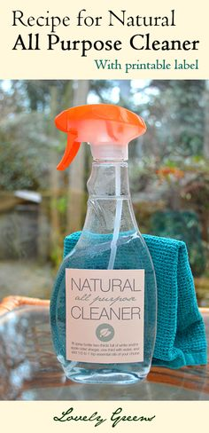 Recipe and instructions for making a simple and effective All Purpose Household Cleaner ~ free printable label included