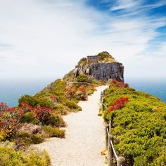 Daily Destinations - January 15, 2014 - Cape Peninsula, South Africa - Cape Point is a promontory at the southeast corner of the Cape Peninsula, which is a mountainous and scenic landform that runs north-south for about thirty kilometers at the extreme southwestern tip of the African continent in the Republic of South Africa.  It is a must see for anyone visiting Cape Town.  Contact our office today for more information!  504-304-9227