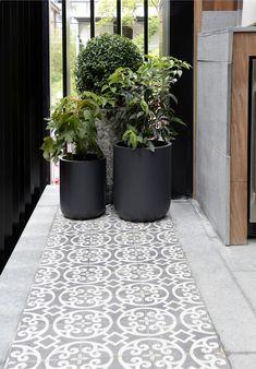 patterned plants: Cluster of pot plants l Outdoor terrace l Patterne...