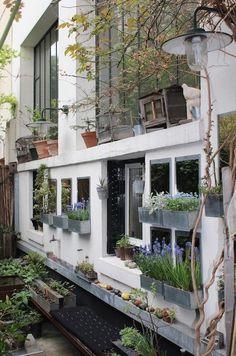 A Rooftop and Entryway Garden in Paris via Gardenista