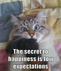 The secret to happiness is low expectations