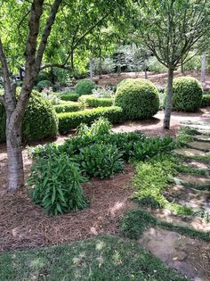 5 Elements of a Southern Style Garden by Carmen Johnston Gardens