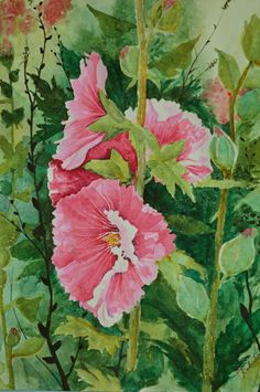 Floral watercolor painting original fine art painting pink hollyhock watercolor…