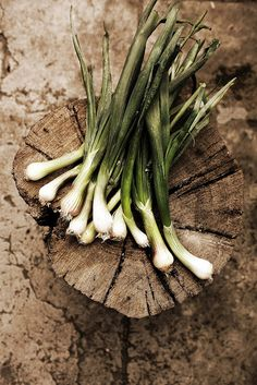 New onions by Mónica Isa Pinto, via Flickr
