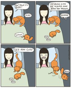 Introducing a new kitty can be challenging as illustrated here (via catversushuman.tumblr.com)