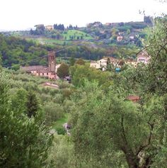 Real estate Italy, Tuscany property for sale, Lucca Farmhouse north hills. www.lucaevillas.it