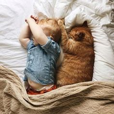 Just and orange tabby cat and a human child showing off their synchronized sleeping skills. Can you handle the cute? :)