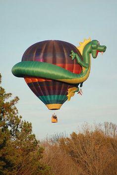 Air Balloon - Lucht Ballon (110)