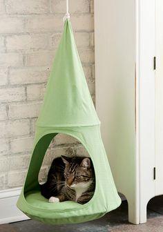 Legowisko dla kota to podstawa. http://domomator.pl/legowisko-dla-kota-podstawa/