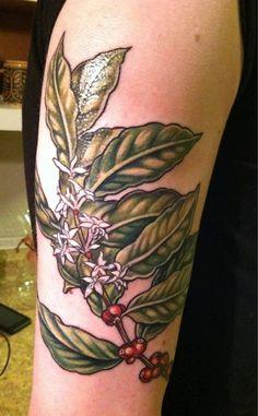 coffee shrub plant tattoo