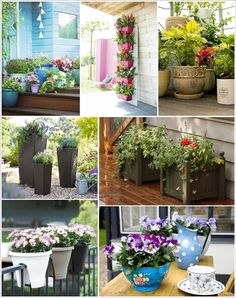 The easiest thing to do to liven up a space is to add planters. Because nothing beats nature's created plants when it comes to decor. So, if you have to de