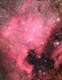 The North America Nebula - Sky & Telescope