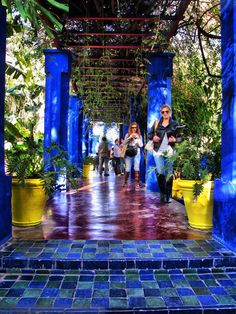 (Majorelle Garden) This 12 acre botanical garden is located in Marrakech. The garden houses birds, cacti and rare plants.