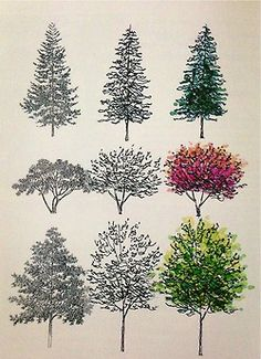 Tree illustrations.