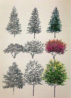 Tree illustrations.