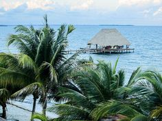 Live in Caribbean Belize for $60 a Day or Less...Lots of expats are already living their dream Caribbean lifestyle… Taking leisurely walks along the coast..