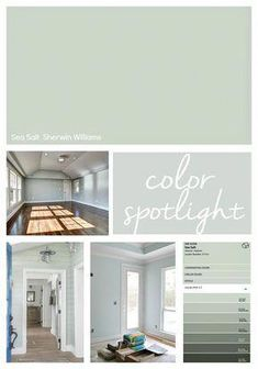 It's been awhile since I have done a Color Spotlight and today I wanted to talk about one of the all-time most popular paint colors out there- Sherwin Williams Sea Salt. I know most of you already kno Sherwin Williams Sea Salt, Popular Paint Colors, Green Paint Colors, Western Paint Colors, Wall Colors, Bathroom Paint Colors, Kitchen Paint Colors, Playroom Paint Colors, Sea Salt Kitchen