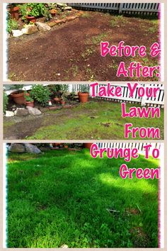 My DIY plan for overseeding a #lawn