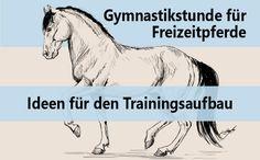 Auch Freizeitpferde brauchen Training um lange gesund zu bleiben! Ideen zum…