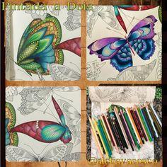 • Musician  • Teacher  • Morzão  • Fucinho  • Music  • Painting and Coloring ✏️®