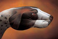 """Impressionante o trabalho de Guido Daniele, que leva uma técnica única e realista para suas pinturas em mãos representando animais fantásticos. """"O Cachorro"""" #inspiracao #InspiracaoeTudo"""