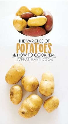 Here is everything you need to know about cooking with potatoes! This helpful article includes the different varieties of potatoes (and how to cook them), how to store potatoes, and more! // Live Eat Learn